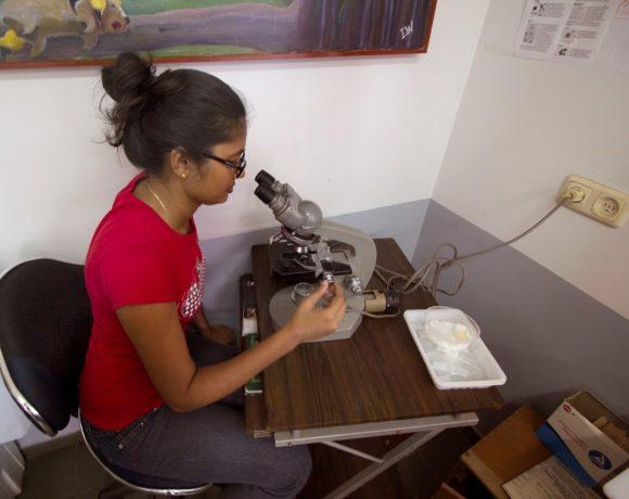 Assistent onderzoekt via de microscoop